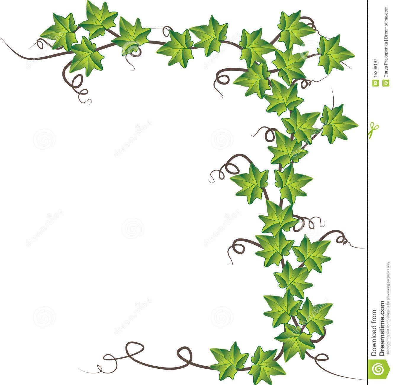 Free Ivy Border Clip Art - http://www.kittencarcare.info ...