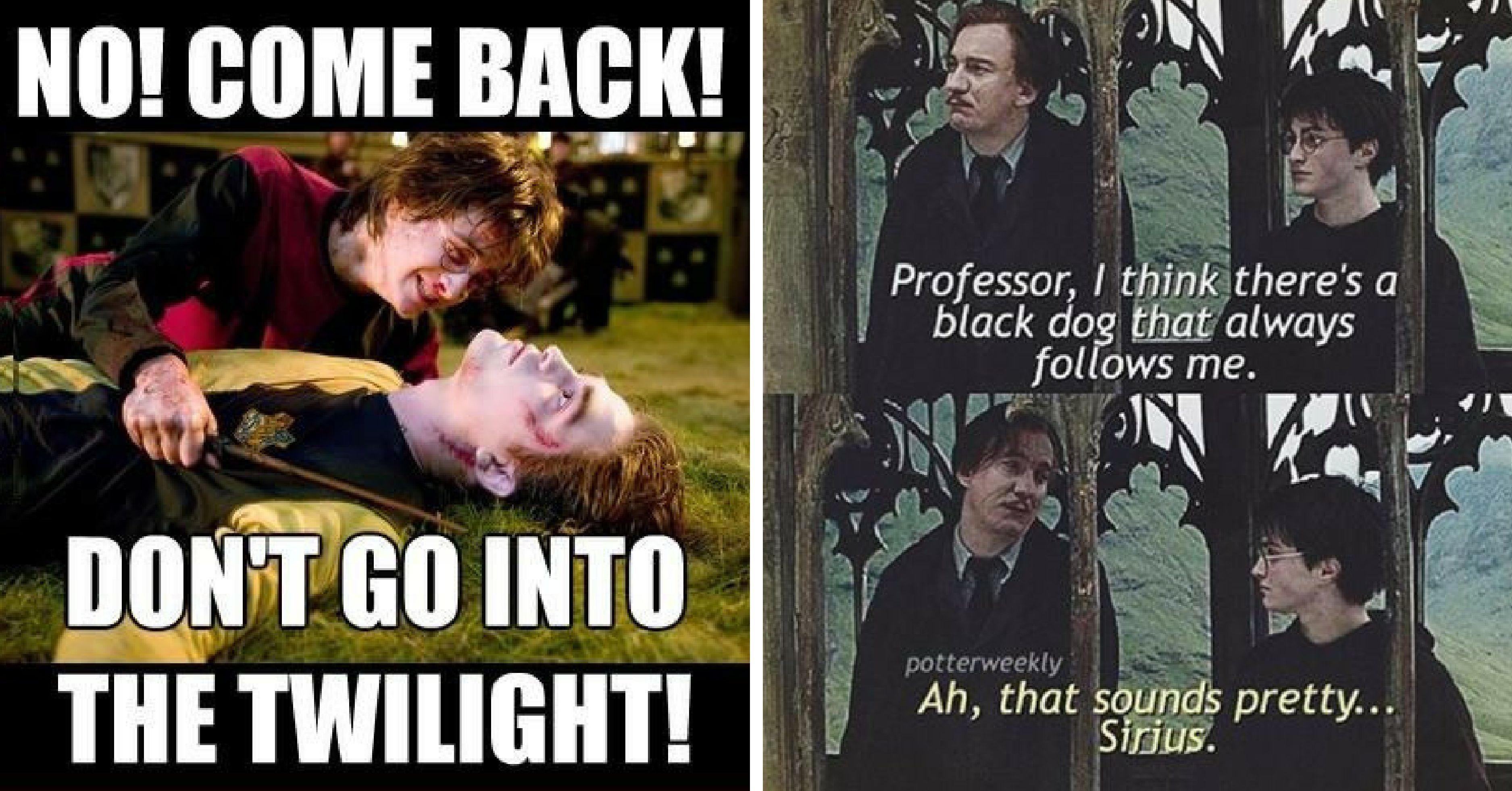15 Harry Potter Memes Only True Potterheads Will Understand Harry Potter Memes Hilarious Harry Potter Funny Pictures Harry Potter Funny
