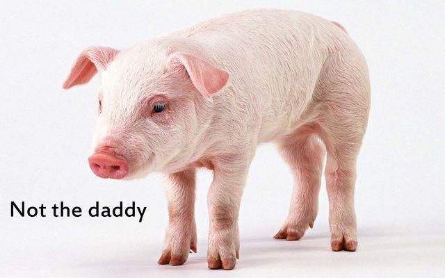 View Full Size Pig Nose Clipart Clipground Bbq Pig Clip Art Free Black Nariz De Porco Emoji Png Download And Download Trans Bbq Pig Free Clip Art Clip Art