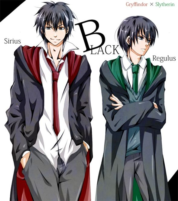Regulus and Sirius. #HarryPotter#AnimeVersion | Geekery ...