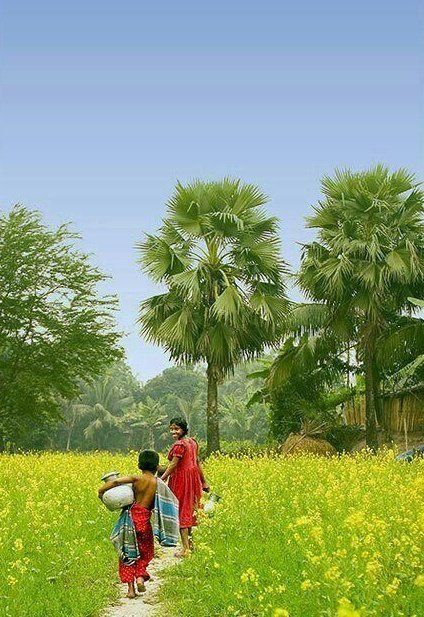 Green World Village Photography India Photography Beautiful Nature