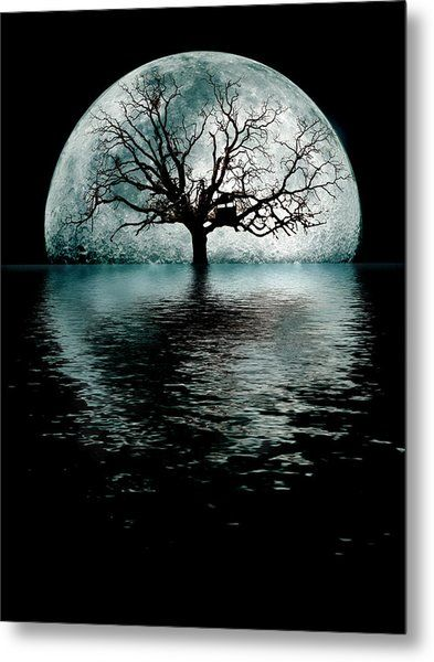 MoonTree Metal Print by Joseph Davis