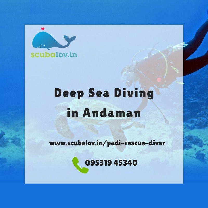 Deep Sea Diving In Andaman Course Is Serious Business A Rescue