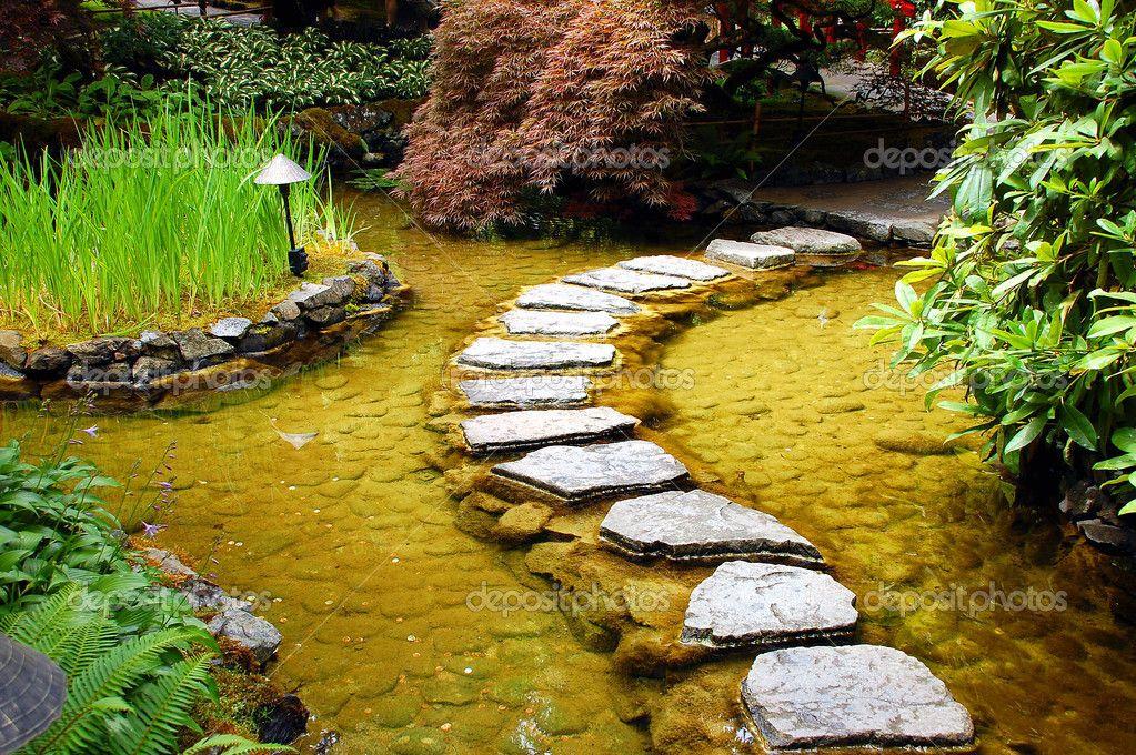 Garden Pond josaelcom