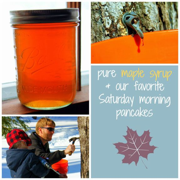 Backyard Sugaring | Maple syrup, Pure maple syrup ...