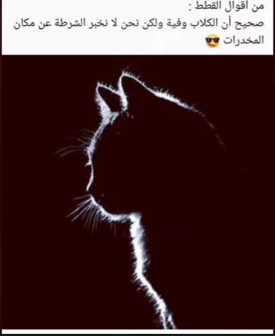 Pin By ᴾᴱᴿᵛᴱᴿᵀᴱᴰ ᴳᴵᴿᴸ On رسومات Animals Statue Like Me