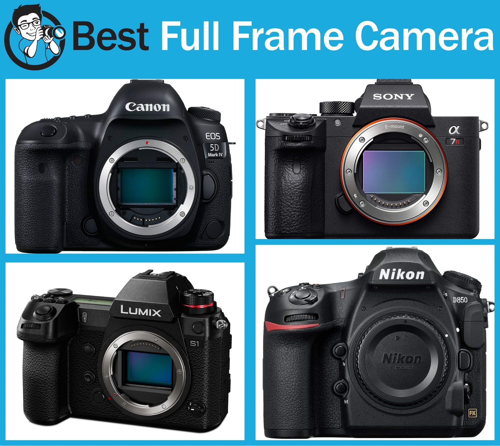 Best Full Frame Camera Bodies On The Market In 2019 In 2020 Full Frame Camera Sony Camera Photography Gear Storage