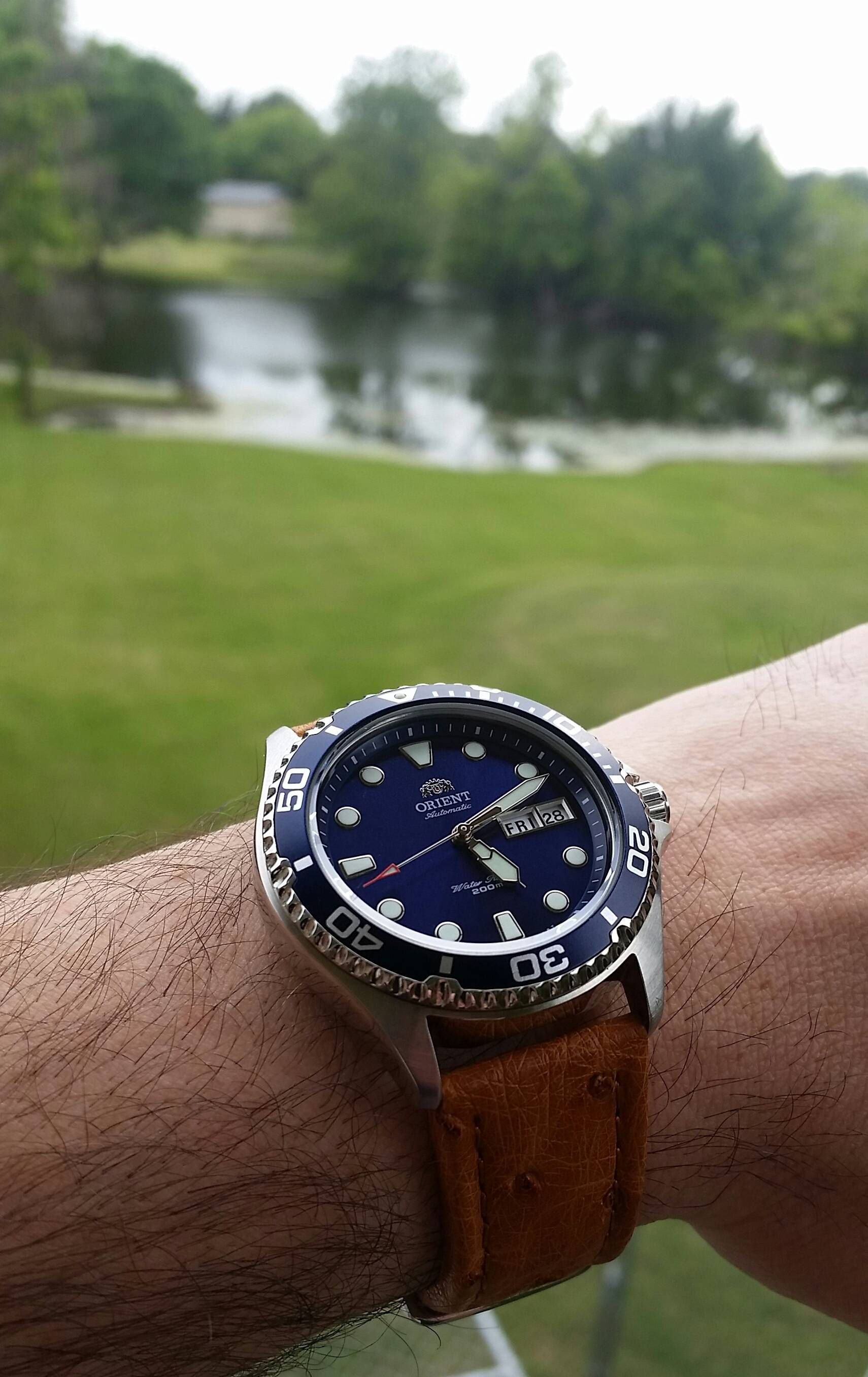 Orient Recently Purchased Ray Ii On A New Leather Strap Watches
