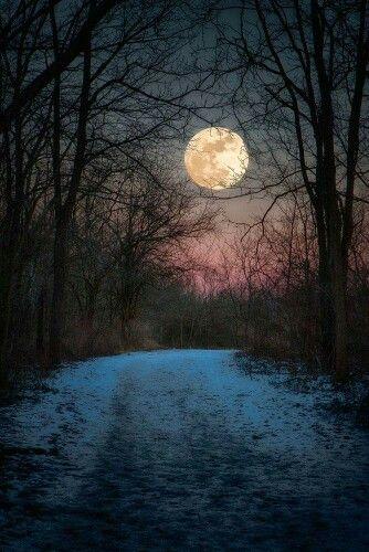 Moonlight Sun Moon Clouds Fog Pinterest Luna Hermosa