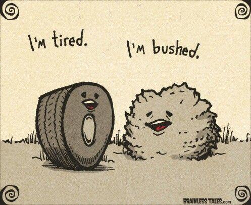 Tired bushed