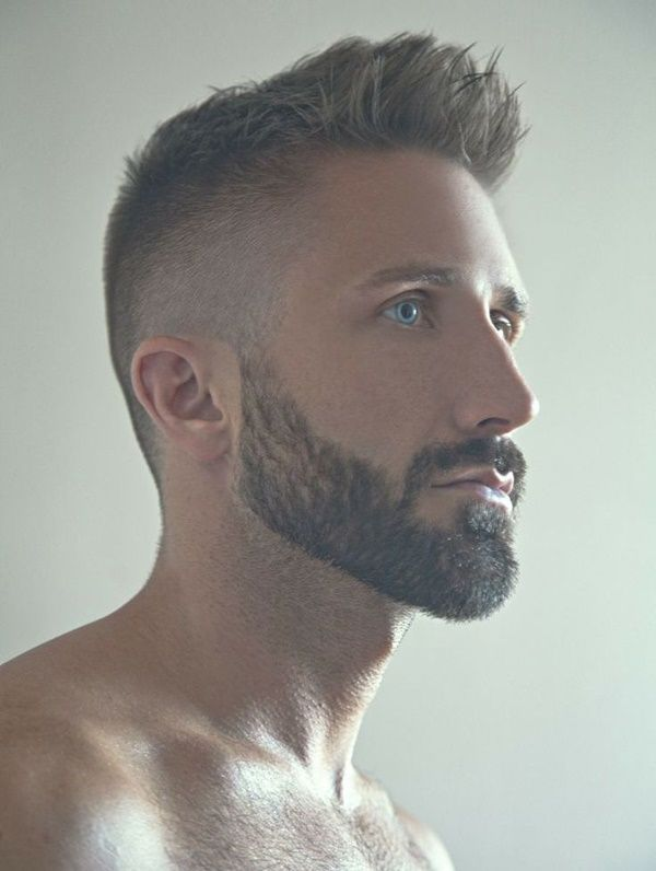 Outstanding 1000 Images About Beard Style On Pinterest Different Beard Short Hairstyles Gunalazisus