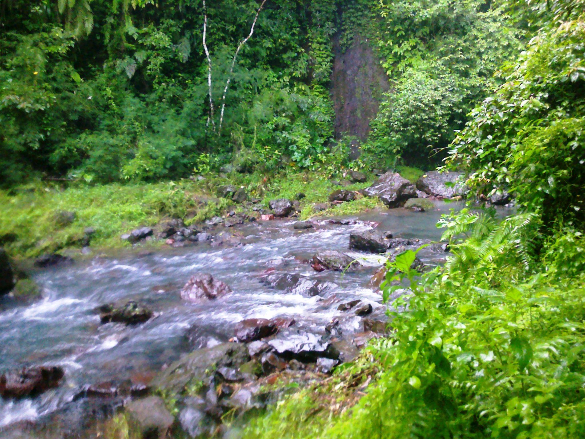 River From Aling-Aling Waterfall : Sambangan, Buleleng. North Bali Indonesia