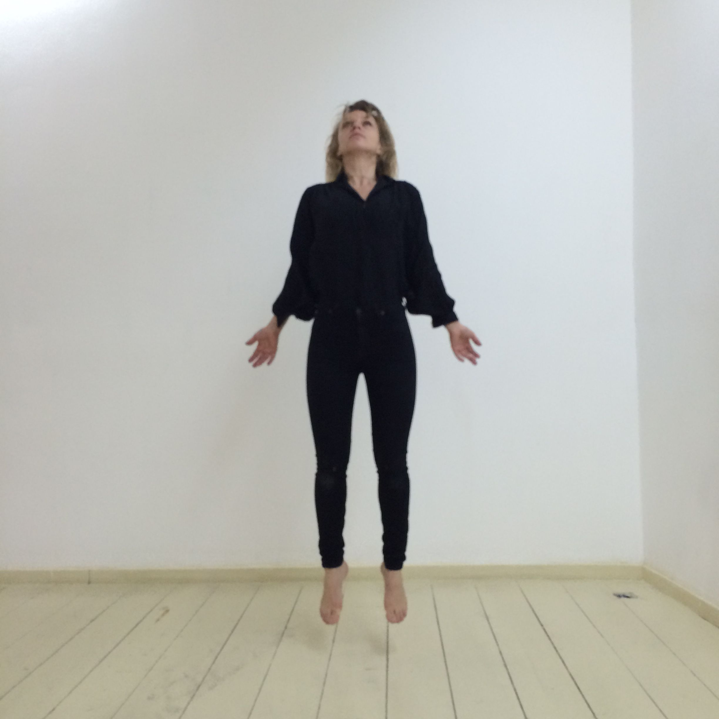 Therese Steele / Levitation For A Standing Audience