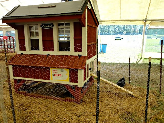 Isle of Wight County Fair | chicken coops and such | Pinterest ...