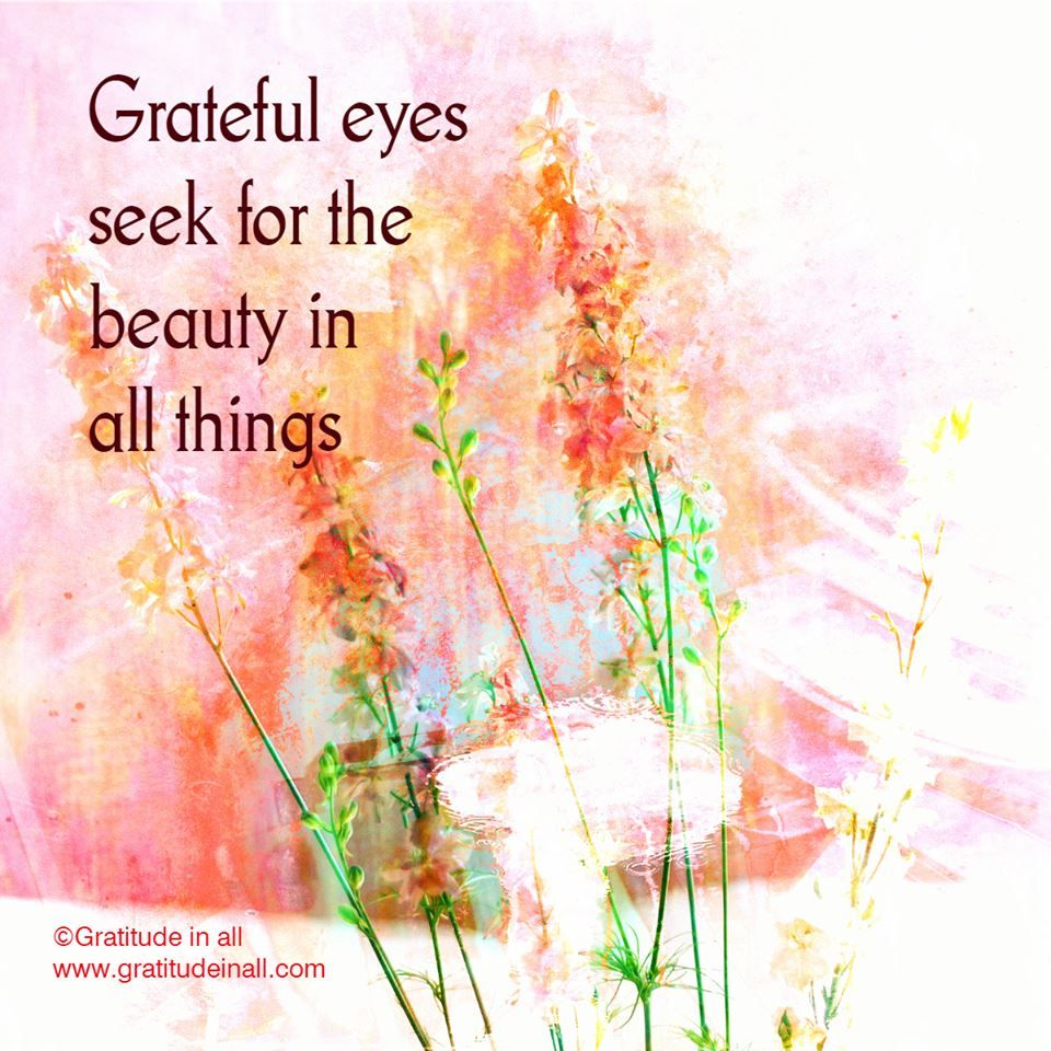 Image result for beautiful gratitude quotes