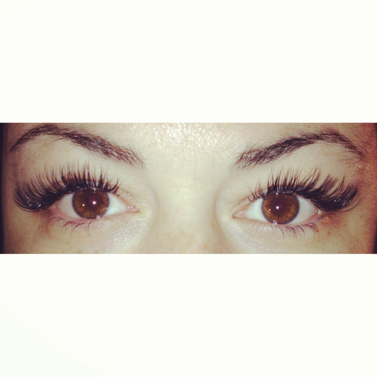 42972912320 Butterfly Kissed Lashes Toronto Done by Jaye | Cute lashes | Semi ...