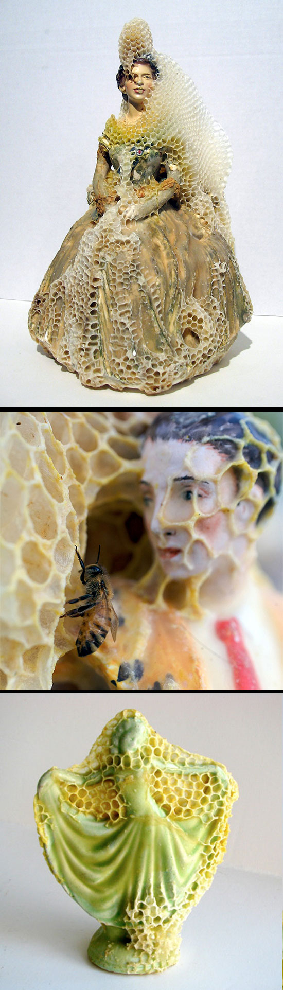 Aganetha Dyck, sculptures made by honeybees