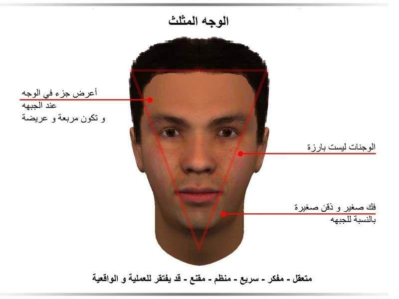 الفراسة الوجه المثلث Jpg 800 600 Face Reading Body Language Self Development