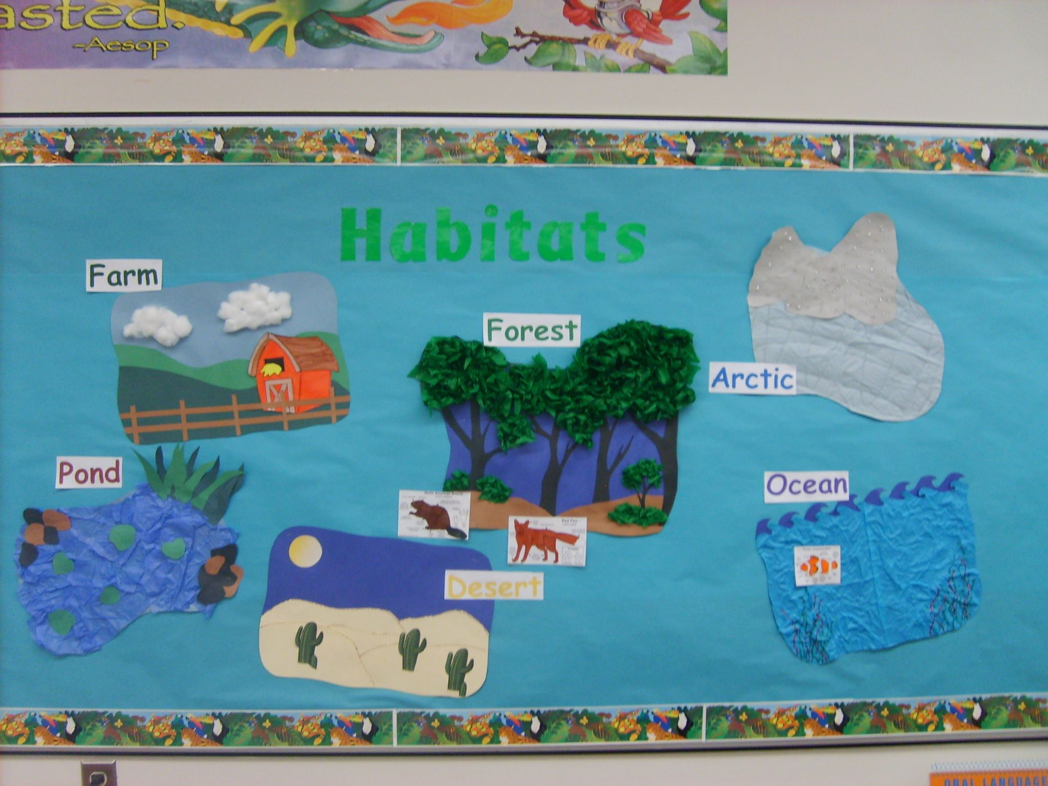 This Is A Great Way To Display Children Habitat Crafts