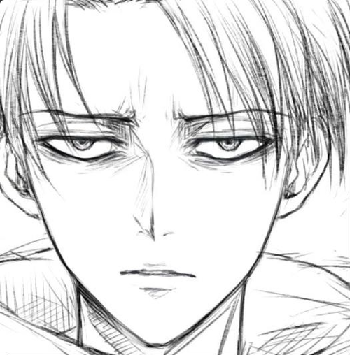 Pin By Rachel Welsh On Levi Ackerman Attack On Titan Levi Levi Ackerman Attack On Titan Anime