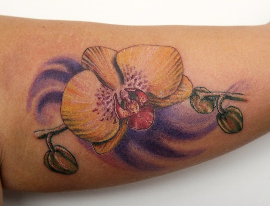 Orchid Tattoo Orchid Tattoo Orchid Tattoo Meaning Tattoo Designs And Meanings