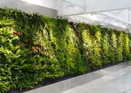 Most Realistic Top Quality Decorative Artificial Plant
