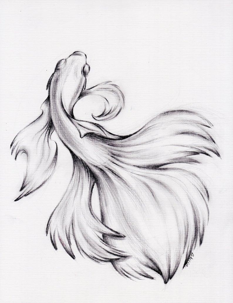 Articles similaires à L'eau danse - dessin crayon fusain Original d'un siamois/Betta combattant sur Etsy