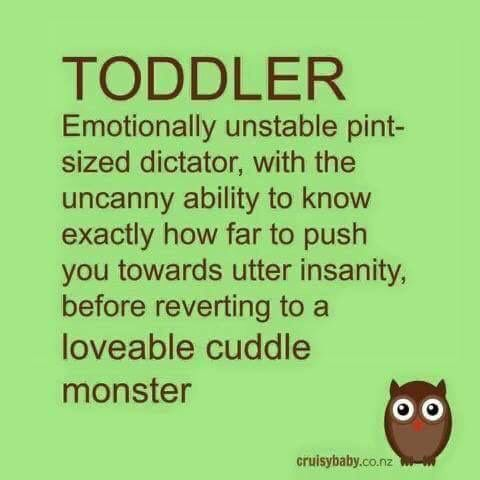 Sounds like my grandson! Oh but how I love him!