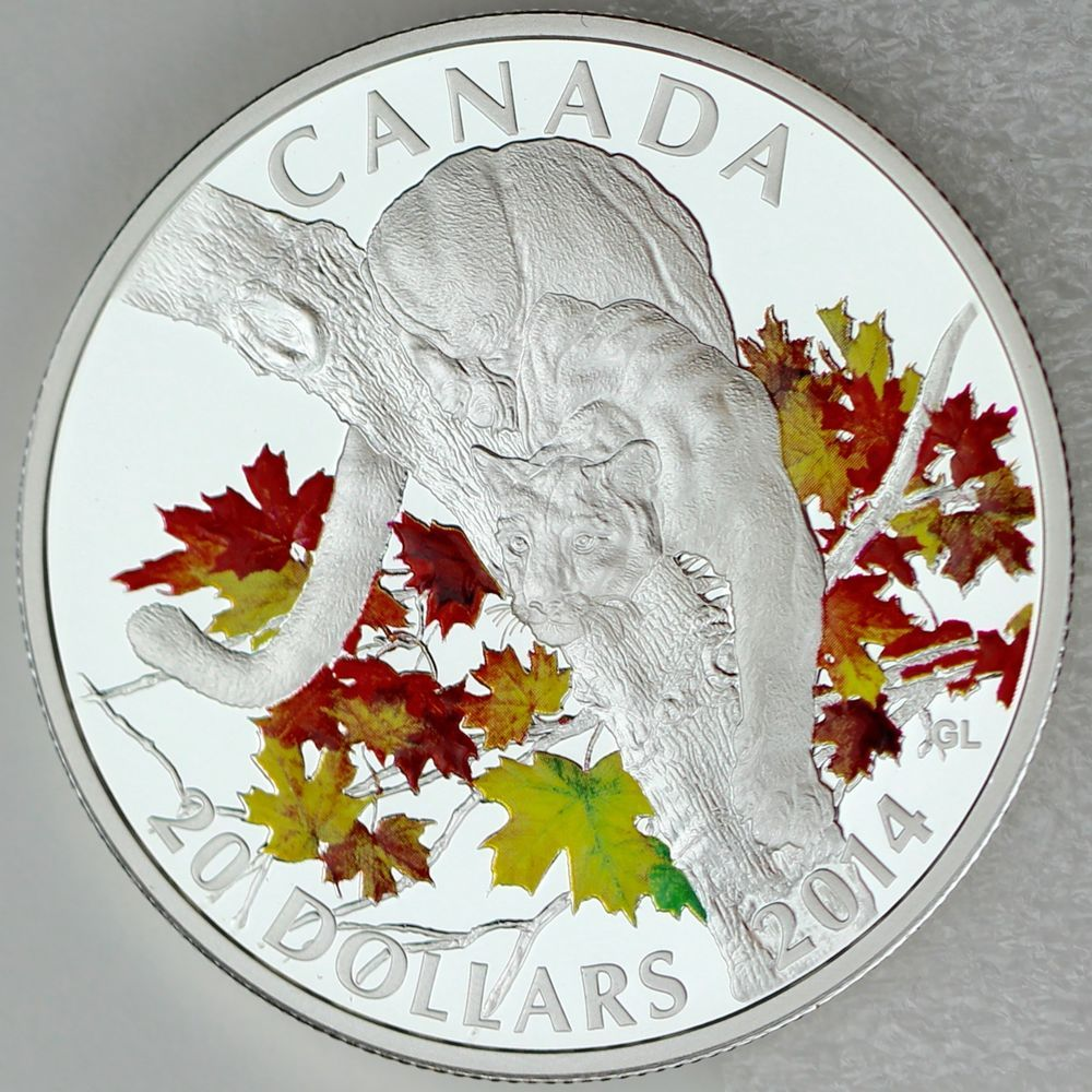2014 Canadian Spring Splendour $20 Maple Canopy Pure Silver Coin