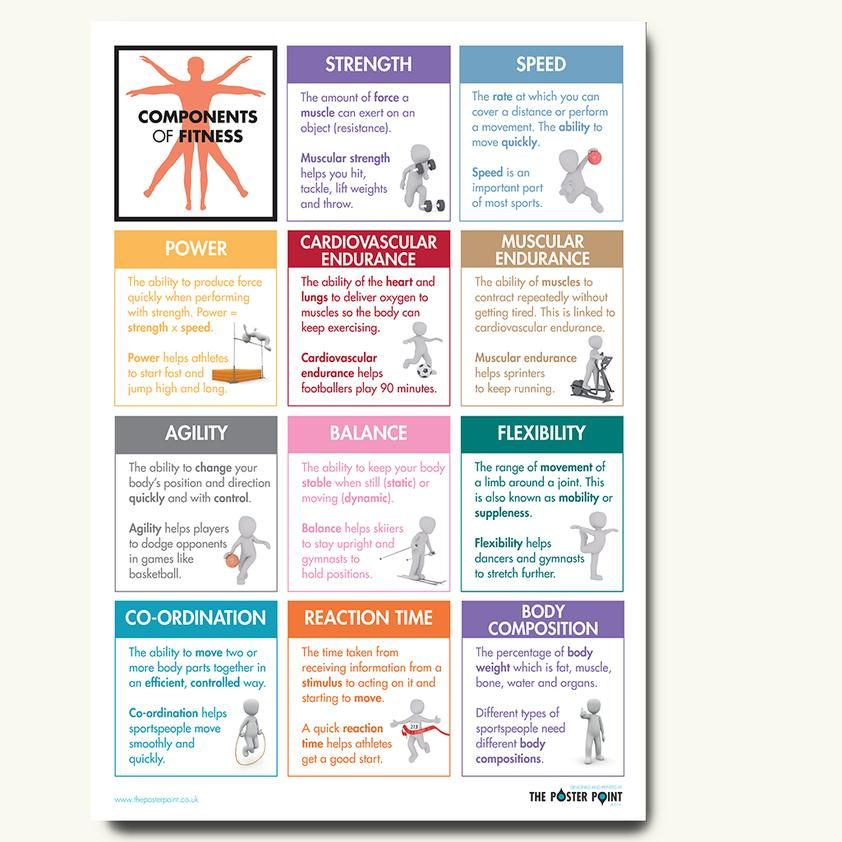 Components Of Fitness Poster Definitions For Gcse Pe Students