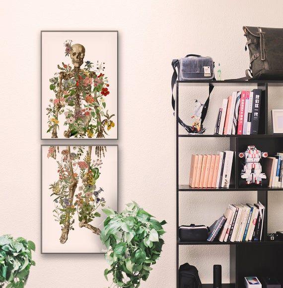 Photo of Human Skeleton Art – Anatomy Illustration – Anatomy Wall Art…