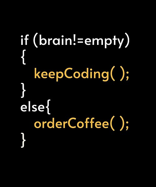 This funny Quote makes an Awesome gift idea for Computer Programmers coders software engineers and developers. … in 2021   Coding quotes, Programmer humor, Programmer quote