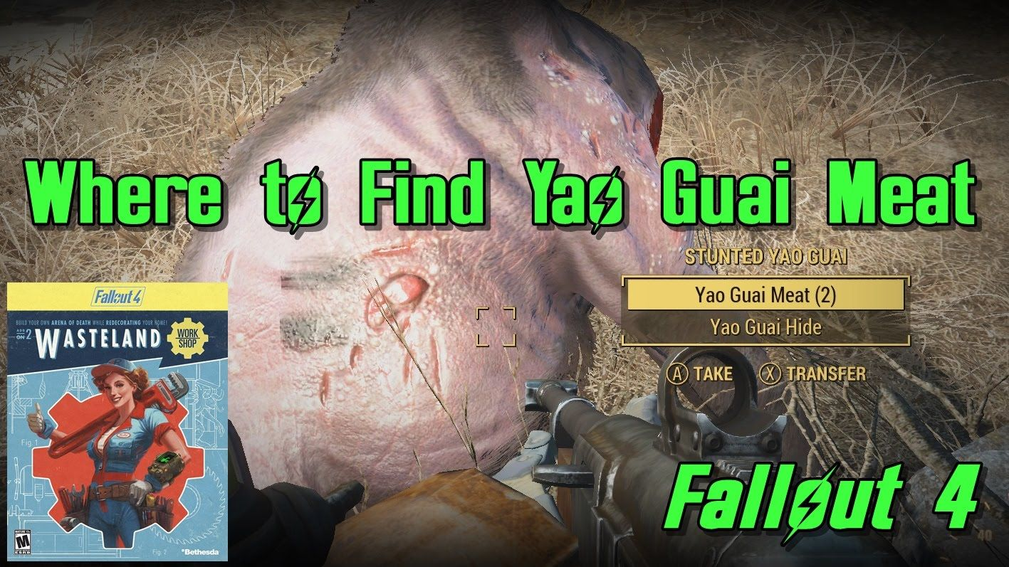 Yao Guai Meat Locations (for Deathclaw Cages) - Fallout 4