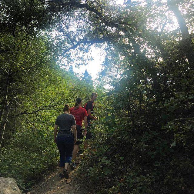 Rope swing trail. Wheee