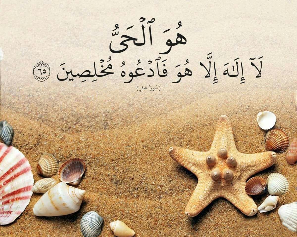 Pin By Sahiha Sham On Quran Verses Quran Verses Islamic Quotes Quran Quotes
