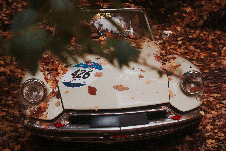 Fall vintage car Porsche Car lease, Car, Car lights