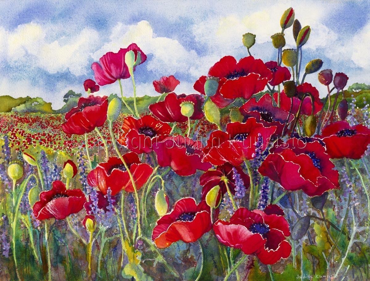 Contemporary - Sunlit Poppies (Original Art from Judith Kuusisto)