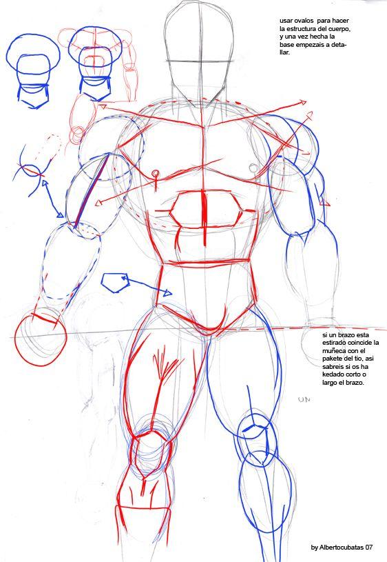 Anatomia De Dragon Ball By Albertocubatas On Deviantart Artwork In