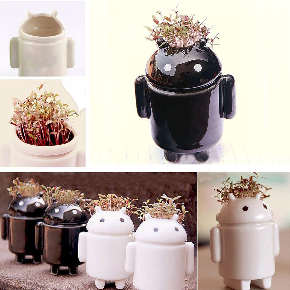 Encontrar m s bonsais informaci n acerca de peque o bonsai for Proveedores decoracion hogar