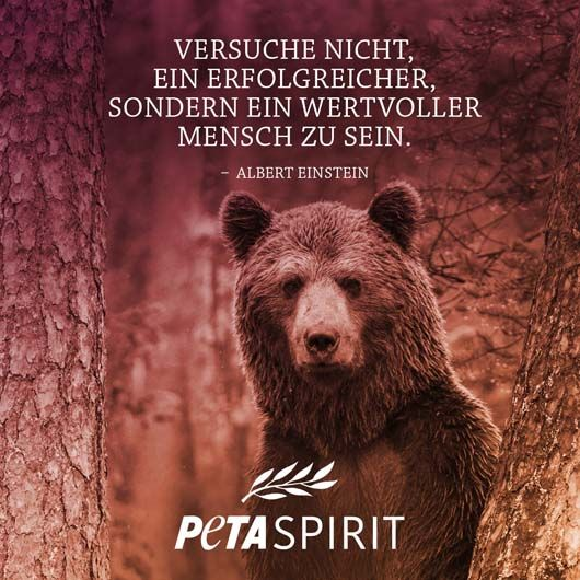 Photo of PETA-Spirit – All quotes with pictures of PETA-Spirit at a glance