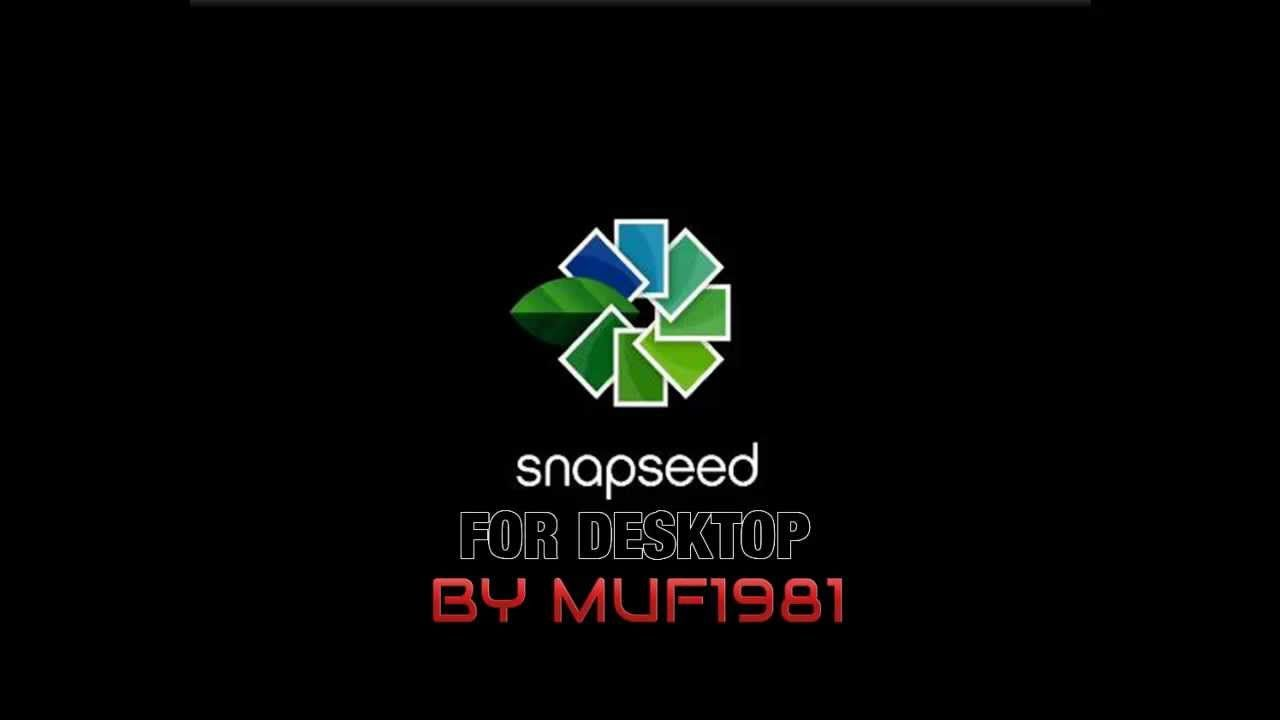 Snapseed for PC +Serial Fotografia