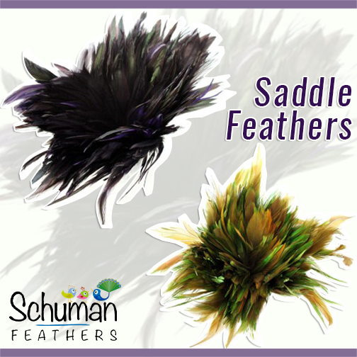 Saddle feathers made available for you in the different shades as well as beautifully dyed in the shades of dual tones. Buy feathers in bulk: bit.ly/1XOkOHj  #wholesale #feathers #feather #decoration #saddlefeather