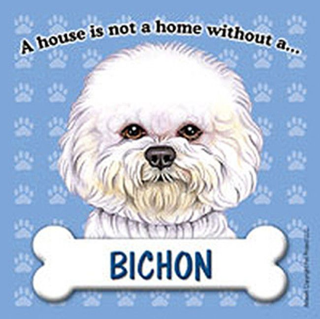 Bichon Frise Dog Magnet Sign House Is Not A Home
