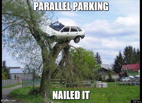 Image result for parallel parking meme