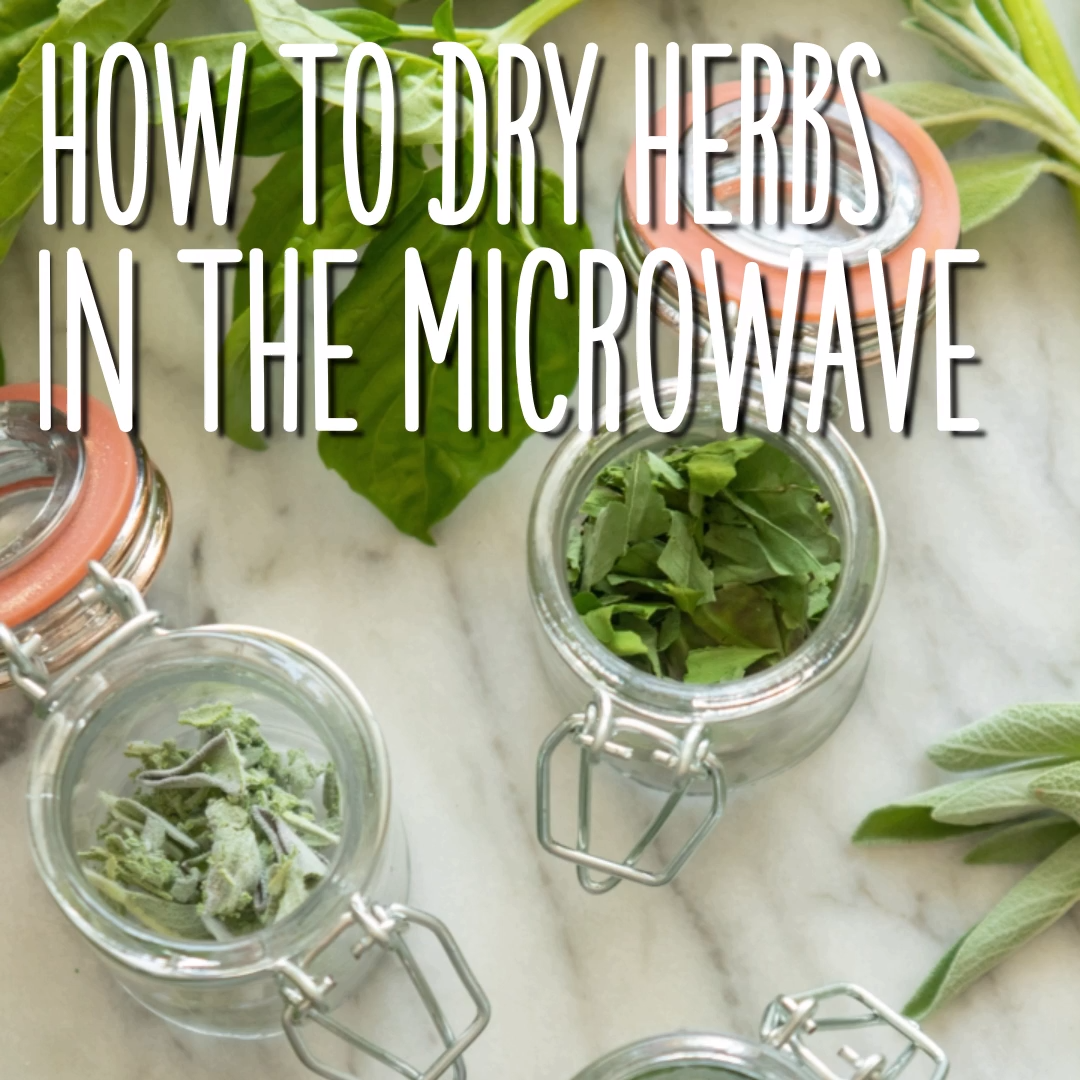 Dry Your Fresh Herbs With An Appliance You Already Have Cooking Herbs In 2020 Cooking Herbs Drying Fresh Herbs Drying Herbs