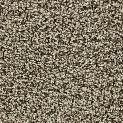 Home decorators collection barron color unrivaled 12 ft