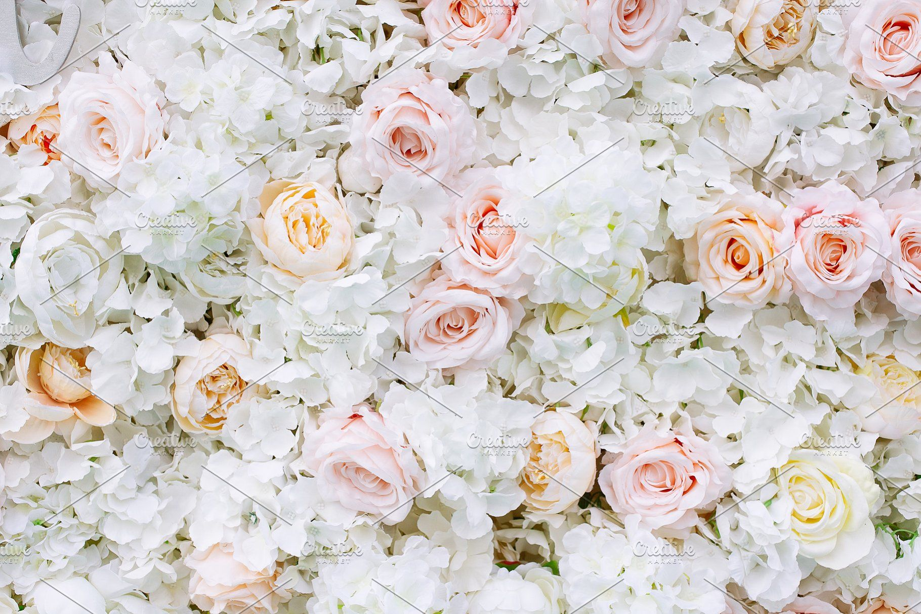 Flowers Wall Background White Roses White Roses Background White Rose Flower Rose Flower Wallpaper