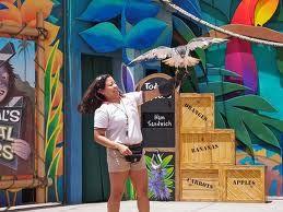 Universal Studios Orlando: Shows and Entertainment