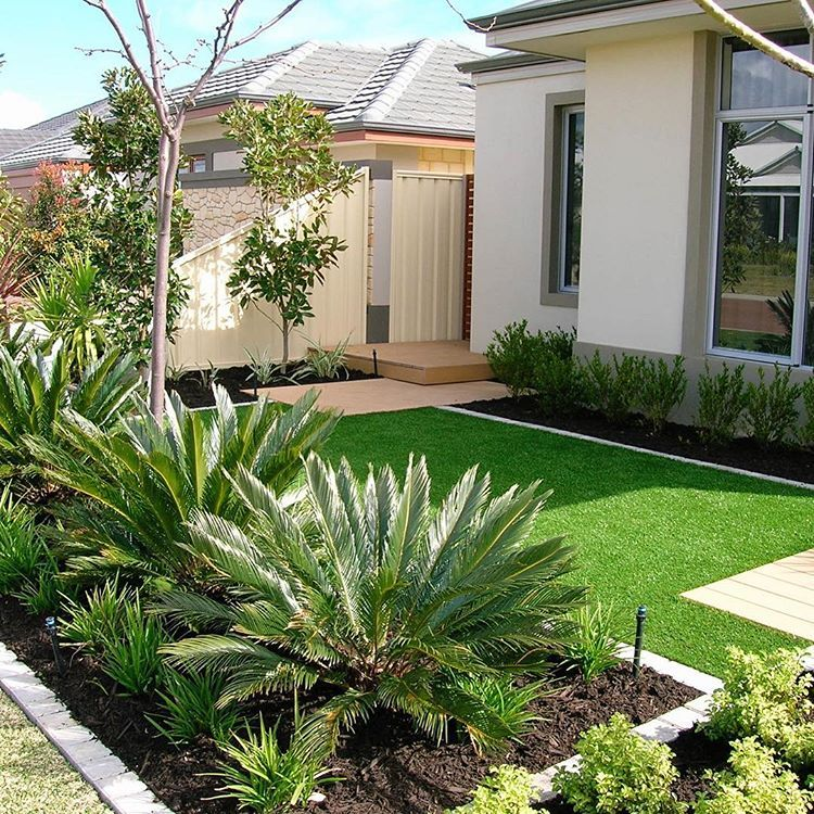 How About These Gorgeous Cycads A Very Small Front Garden With Easy Care Plantings Being Garden Pool Design Small Front Gardens Front Garden Design