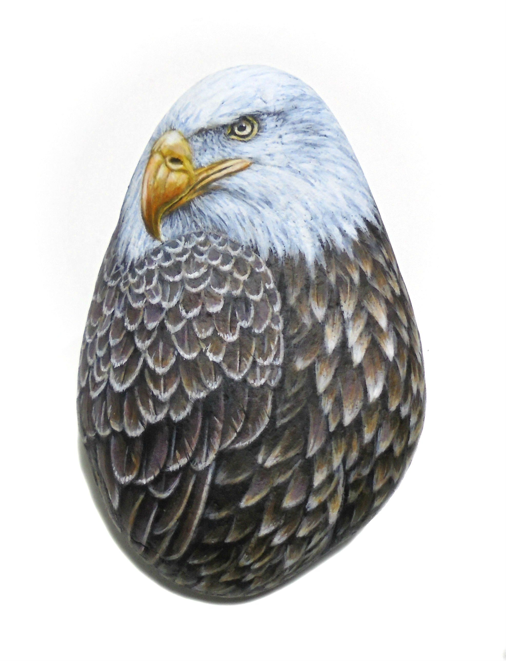 Bald Eagle Hand Painted Stone Bird Painting Home Decor Rock Animal Acrylic And Finished With Gloss Varnish